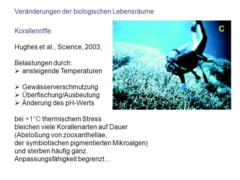 Korallenriffe: Hughes et al., Science, 2003, Belastungen durch: ansteigende Temperaturen Gewässerverschmutzung Überfischung/Ausbeutung Änderung des pH
