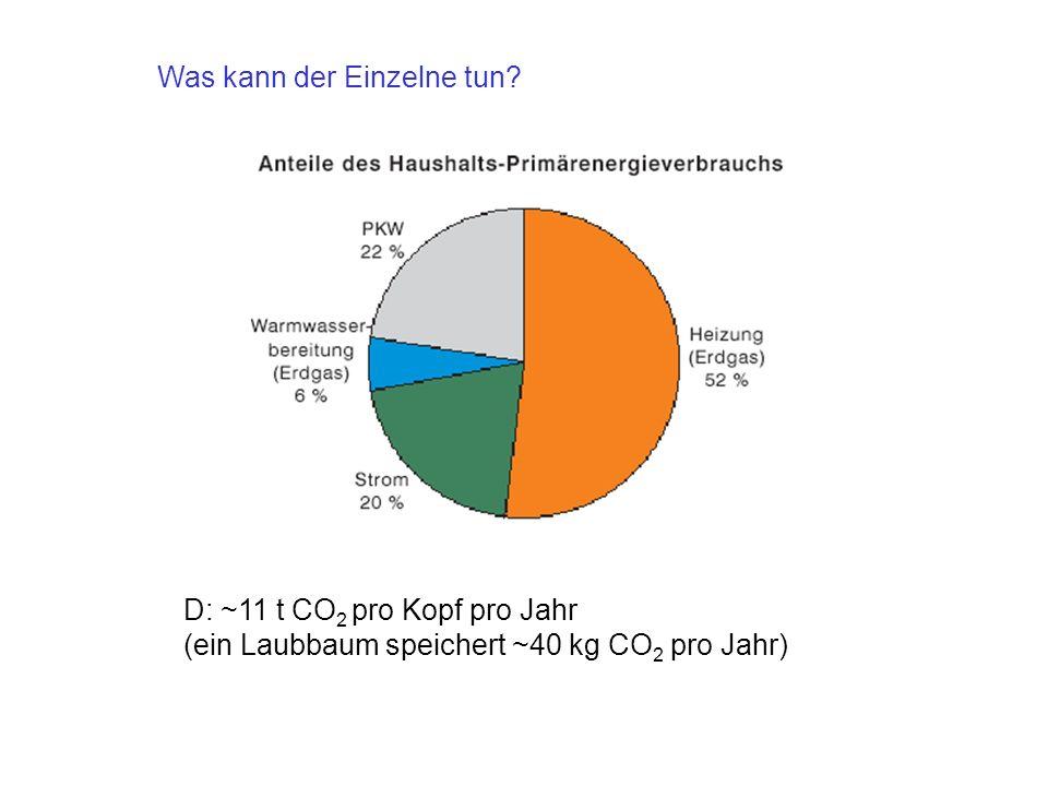 D: ~11 t CO 2 pro Kopf pro Jahr (ein Laubbaum speichert ~40 kg CO 2 pro Jahr) Was kann der Einzelne tun?