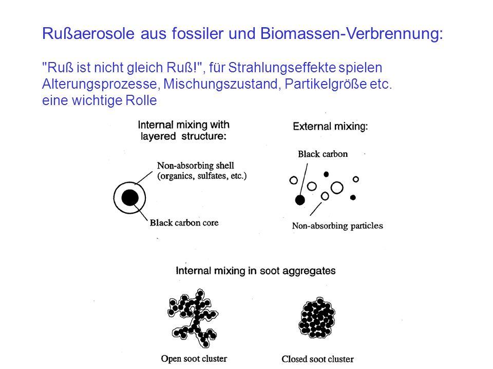 Rußaerosole aus fossiler und Biomassen-Verbrennung: