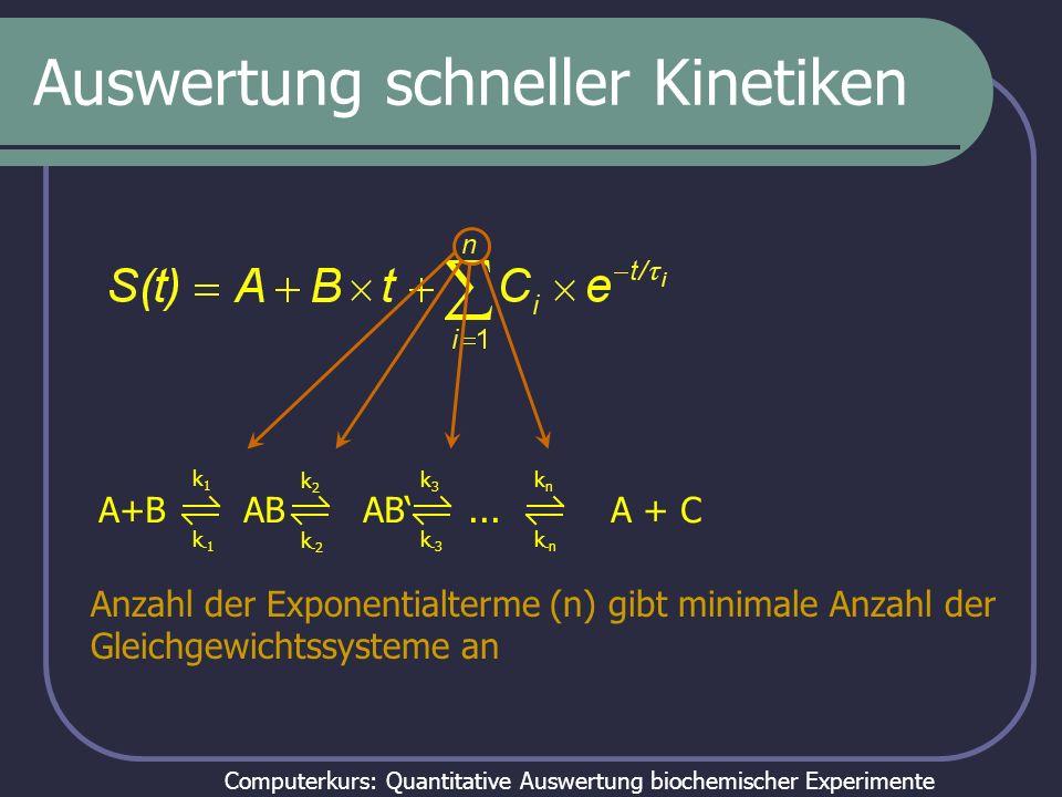 Computerkurs: Quantitative Auswertung biochemischer Experimente Auswertung schneller Kinetiken Relaxationszeiten hängen von kinetischen Konstanten ab AB A + B