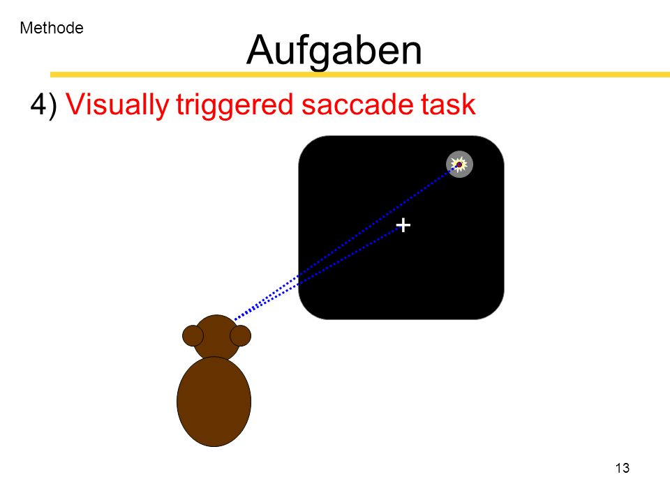 13 Aufgaben 4) Visually triggered saccade task + Methode