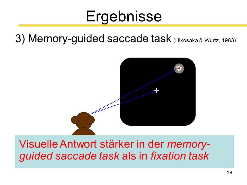 18 Ergebnisse 3) Memory-guided saccade task (Hikosaka & Wurtz, 1983) + + Visuelle Antwort stärker in der memory- guided saccade task als in fixation task