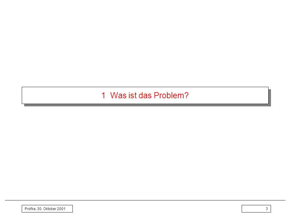 Profke, 30.Oktober 20014 1 Was ist das Problem. Die Lage Was kann ein Schüler in Mathematik.