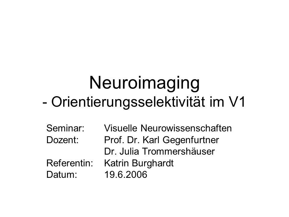 Neuroimaging - Orientierungsselektivität im V1 Seminar: Visuelle Neurowissenschaften Dozent: Prof. Dr. Karl Gegenfurtner Dr. Julia Trommershäuser Refe