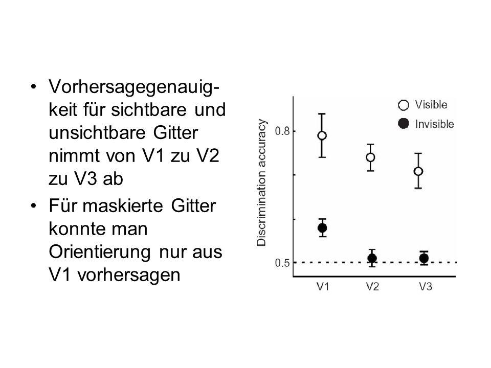Vorhersagegenauig- keit für sichtbare und unsichtbare Gitter nimmt von V1 zu V2 zu V3 ab Für maskierte Gitter konnte man Orientierung nur aus V1 vorhe