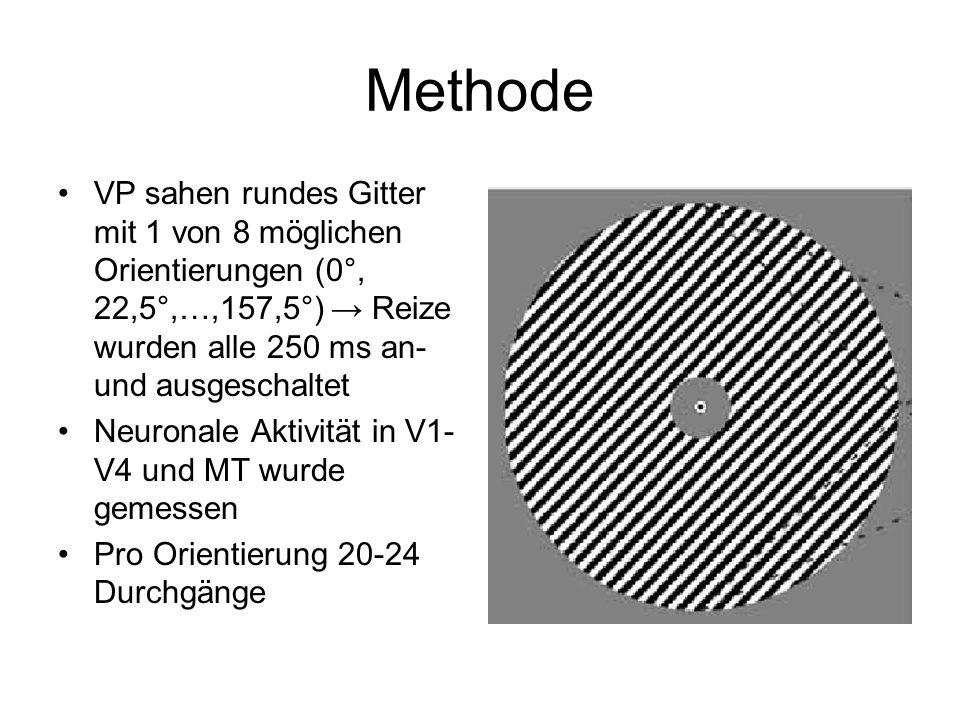Methode VP sahen rundes Gitter mit 1 von 8 möglichen Orientierungen (0°, 22,5°,…,157,5°) Reize wurden alle 250 ms an- und ausgeschaltet Neuronale Akti