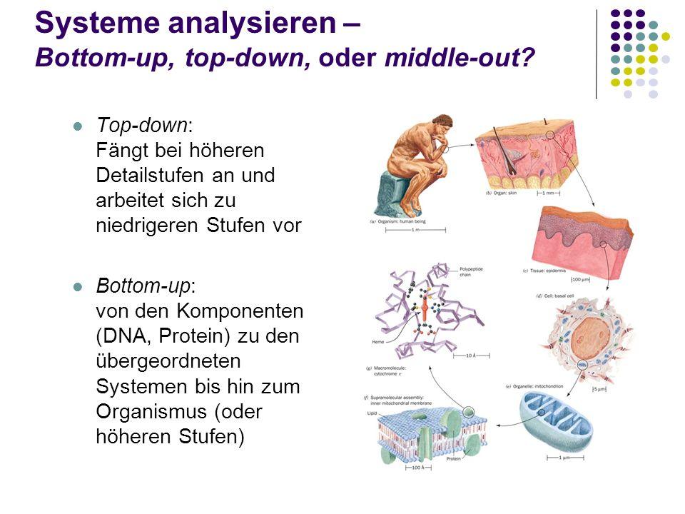 Systeme analysieren – Bottom-up, top-down, oder middle-out? Top-down: Fängt bei höheren Detailstufen an und arbeitet sich zu niedrigeren Stufen vor Bo