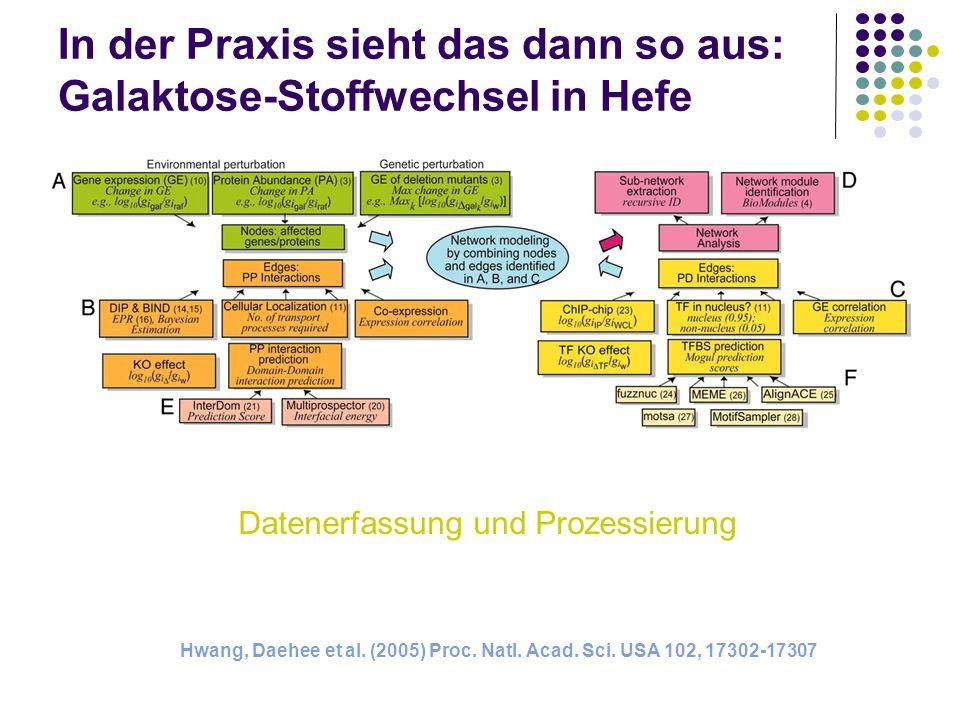 In der Praxis sieht das dann so aus: Galaktose-Stoffwechsel in Hefe Hwang, Daehee et al. (2005) Proc. Natl. Acad. Sci. USA 102, 17302-17307 Datenerfas