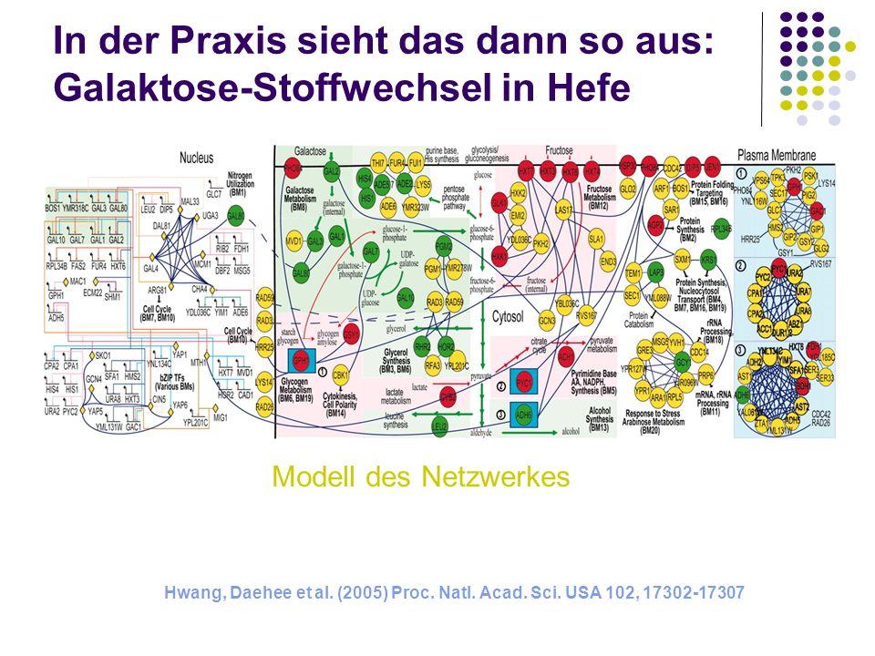 In der Praxis sieht das dann so aus: Galaktose-Stoffwechsel in Hefe Hwang, Daehee et al. (2005) Proc. Natl. Acad. Sci. USA 102, 17302-17307 Modell des