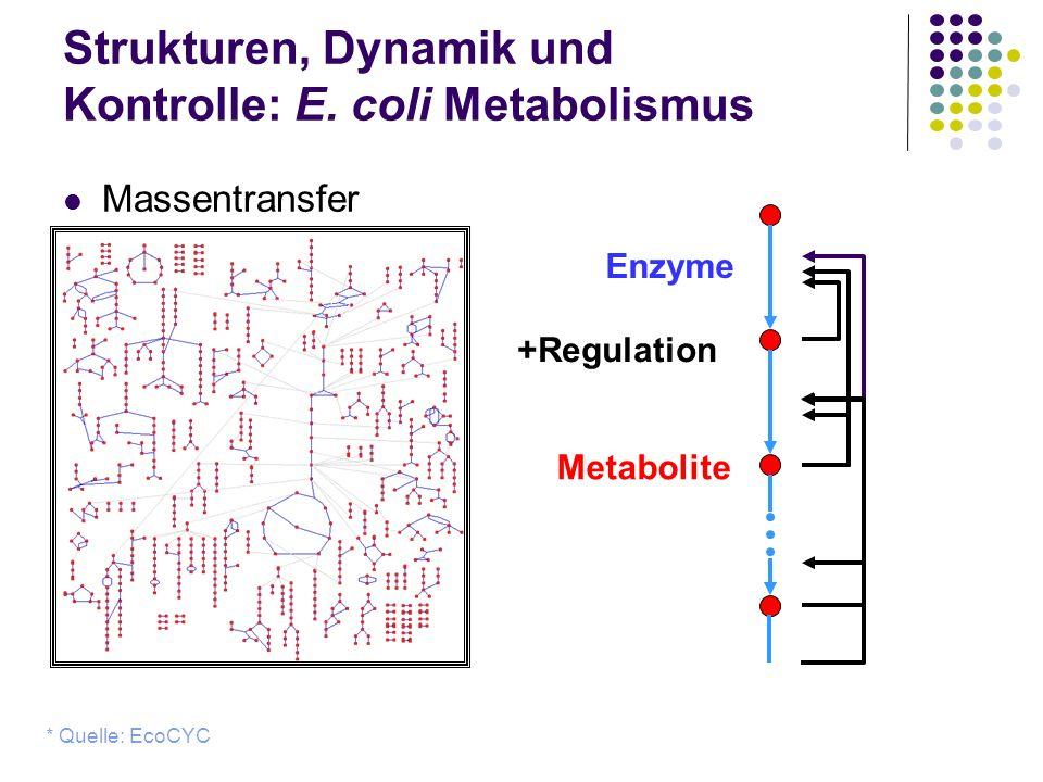 Strukturen, Dynamik und Kontrolle: E. coli Metabolismus Massentransfer * Quelle: EcoCYC Metabolite Enzyme +Regulation