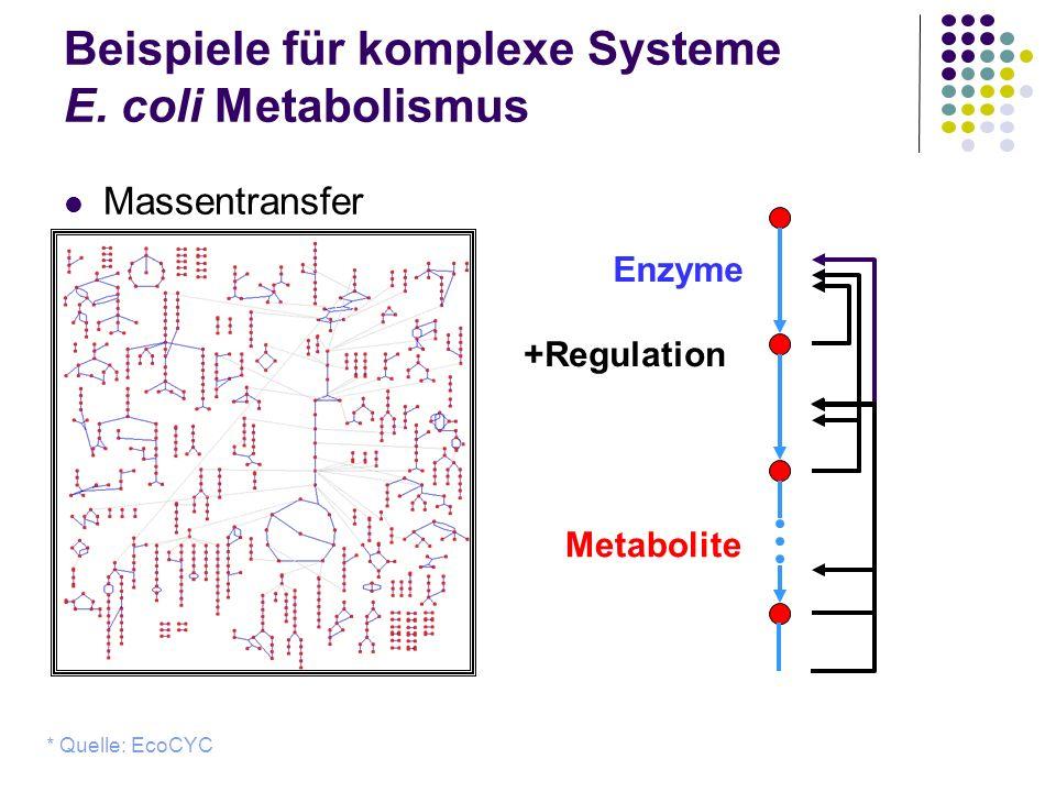 Beispiele für komplexe Systeme E. coli Metabolismus Massentransfer * Quelle: EcoCYC Metabolite Enzyme +Regulation