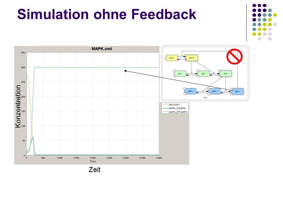Simulation ohne Feedback Zeit Konzentration