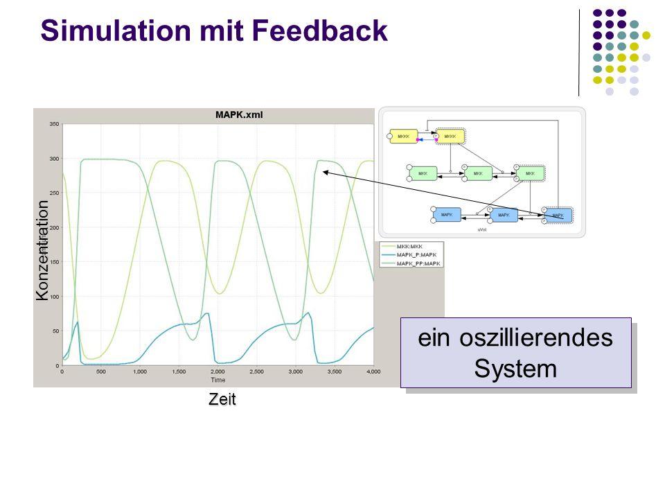 Simulation mit Feedback ein oszillierendes System Zeit Konzentration