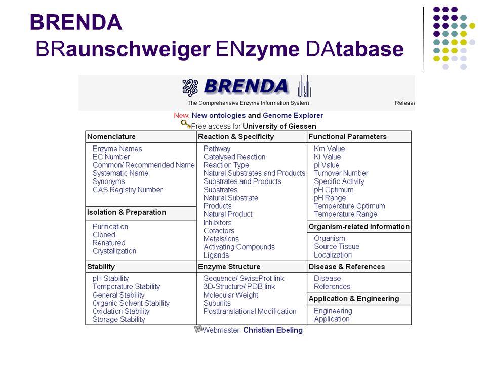 BRENDA BRaunschweiger ENzyme DAtabase