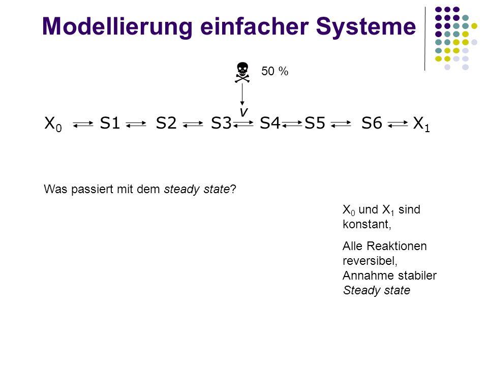 Modellierung einfacher Systeme Was passiert mit dem steady state? 50 % X 0 und X 1 sind konstant, Alle Reaktionen reversibel, Annahme stabiler Steady