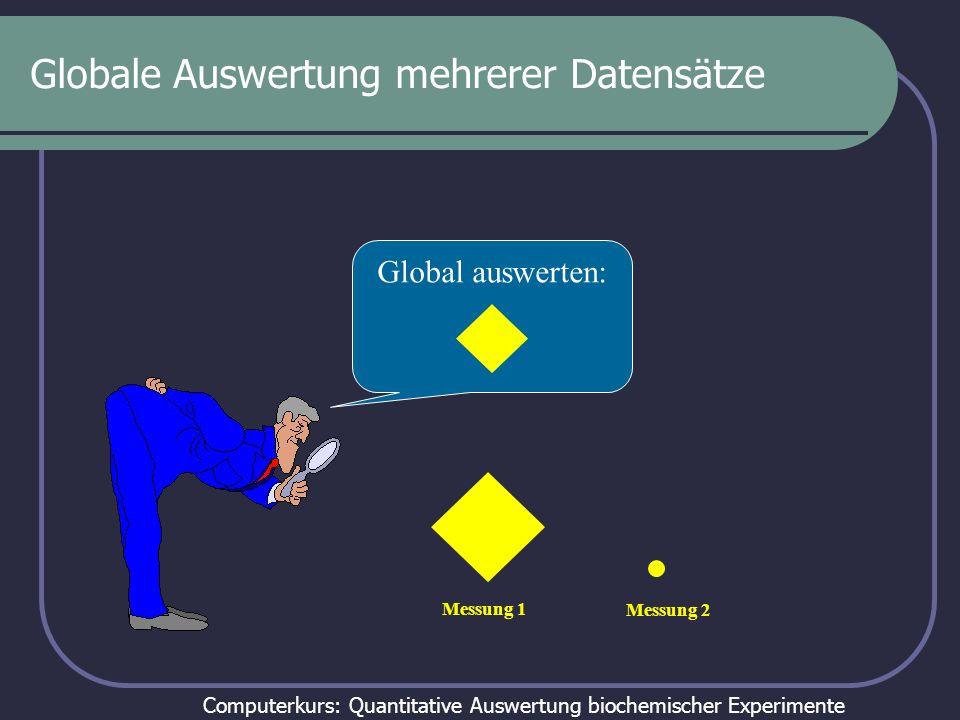 Computerkurs: Quantitative Auswertung biochemischer Experimente Globale Auswertung mehrerer Datensätze Global auswerten: Messung 1 Messung 2