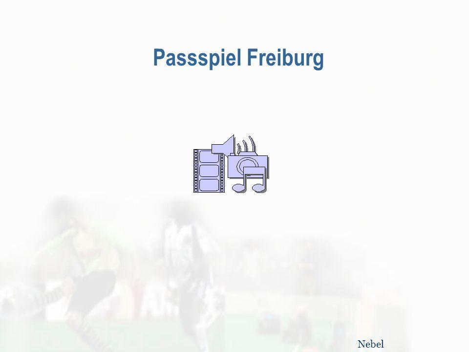 Passspiel Freiburg Nebel