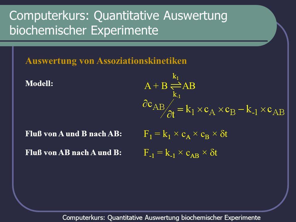 Computerkurs: Quantitative Auswertung biochemischer Experimente Auswertung von Assoziationskinetiken Modell: Fluß von A und B nach AB: A + B AB k1k1 k
