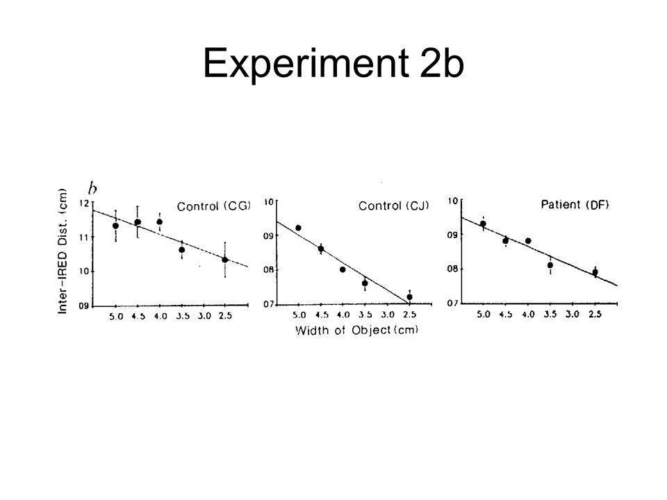 Experiment 2b
