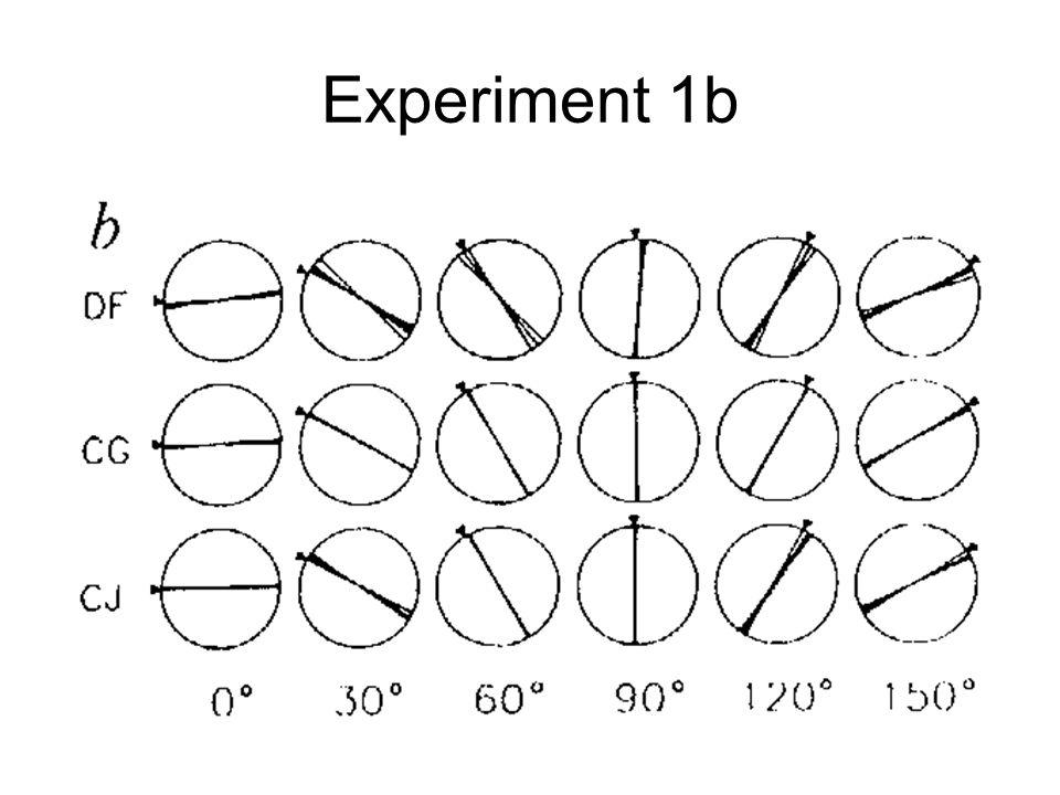 Experiment 1b