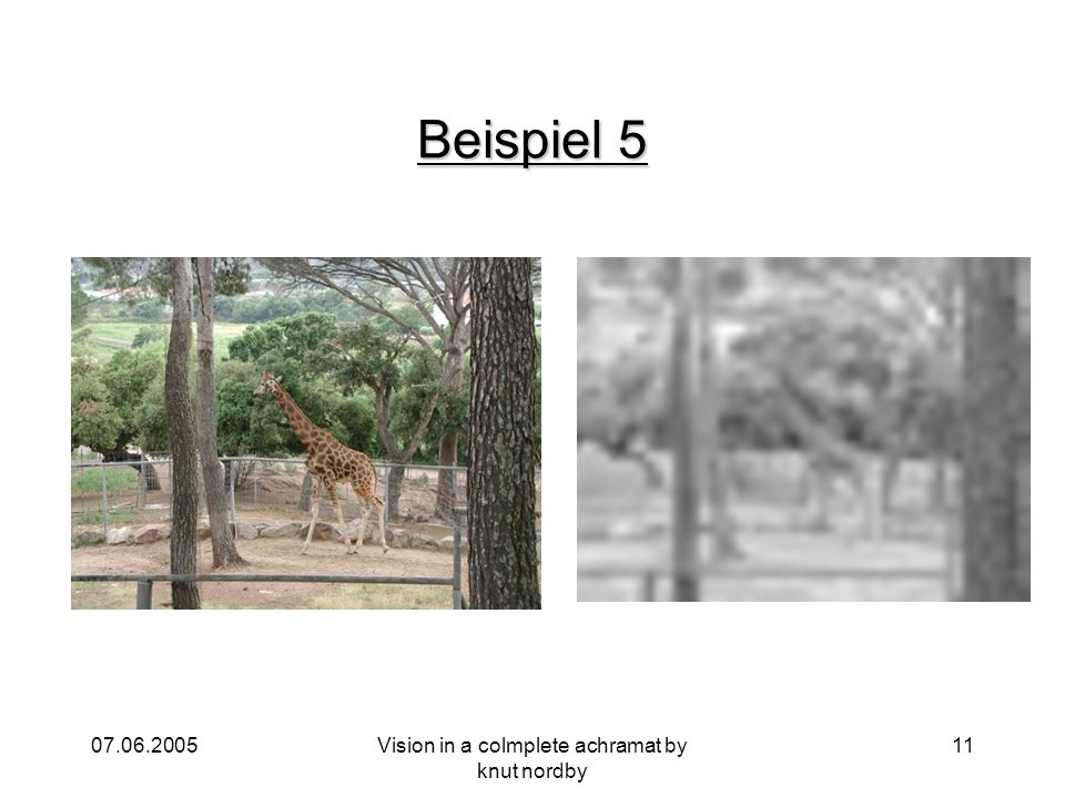 07.06.2005Vision in a colmplete achramat by knut nordby 11 Beispiel 5