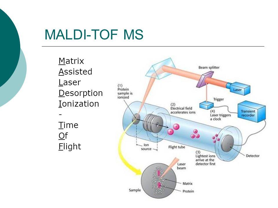 Ionisierungsverfahren für Massenspektrometrie Page 172 Voet Biochemistry 3e © 2004 John Wiley & Sons, Inc.