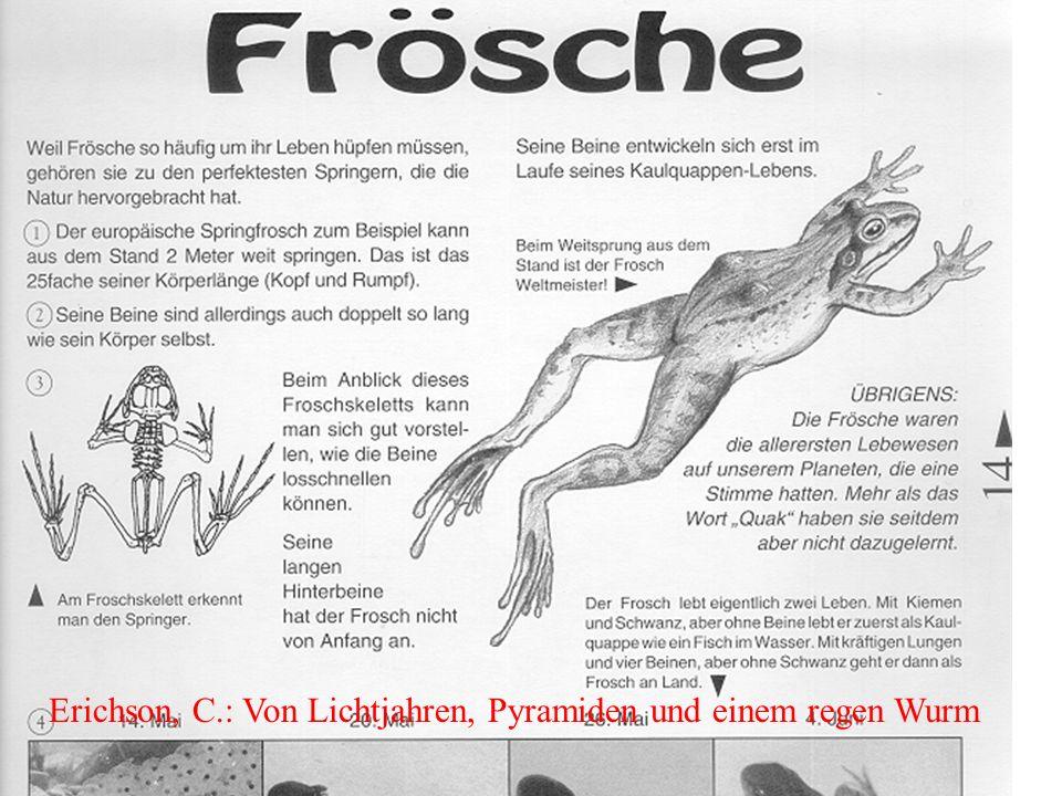 Erichson, C.: Von Lichtjahren, Pyramiden und einem regen Wurm
