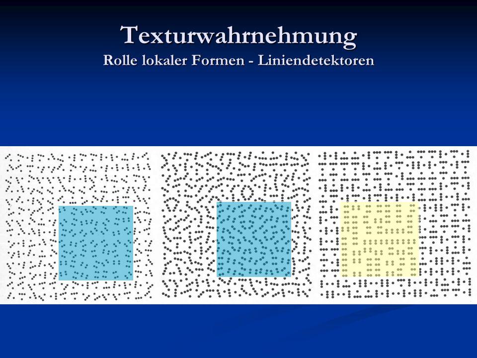 Texturwahrnehmung Rolle lokaler Formen - Liniendetektoren