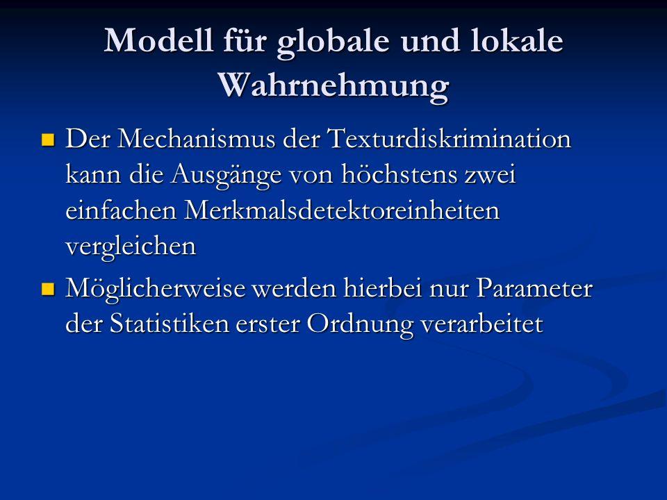 Modell für globale und lokale Wahrnehmung Der Mechanismus der Texturdiskrimination kann die Ausgänge von höchstens zwei einfachen Merkmalsdetektoreinh