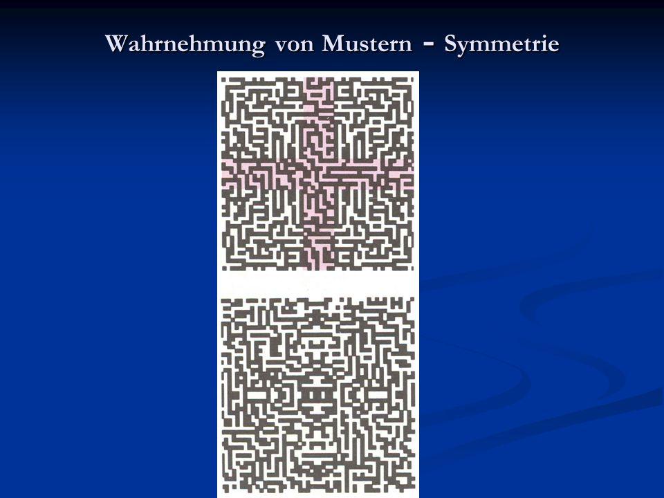 Wahrnehmung von Mustern - Symmetrie