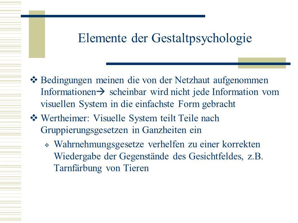 Elemente der Gestaltpsychologie Bedingungen meinen die von der Netzhaut aufgenommen Informationen scheinbar wird nicht jede Information vom visuellen