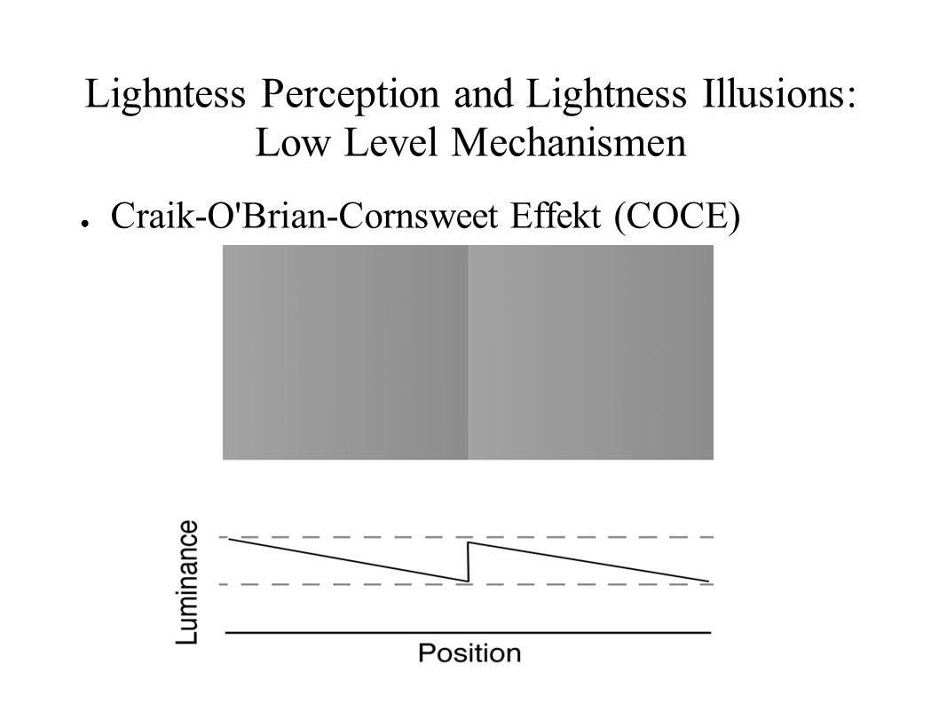 Lighntess Perception and Lightness Illusions: Low Level Mechanismen Craik-O'Brian-Cornsweet Effekt (COCE)