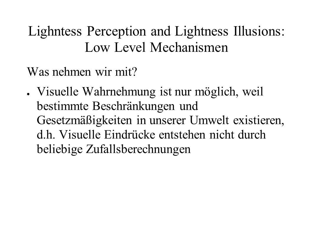 Lighntess Perception and Lightness Illusions: Low Level Mechanismen Was nehmen wir mit? Visuelle Wahrnehmung ist nur möglich, weil bestimmte Beschränk