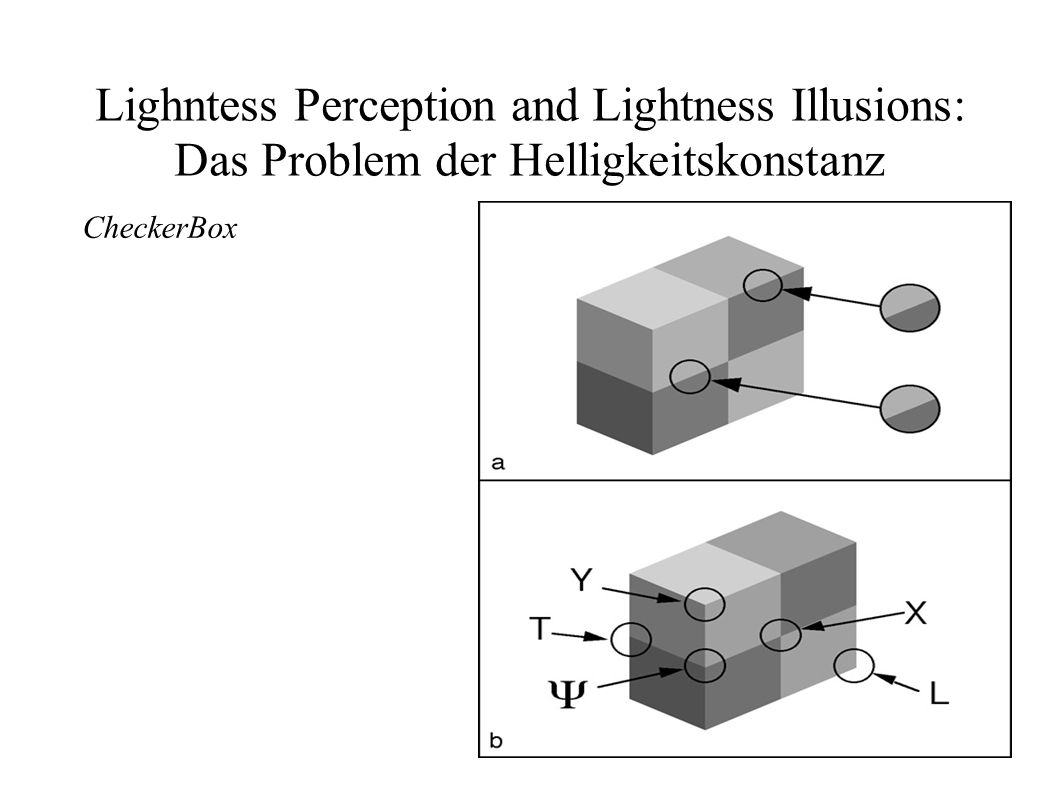 Lighntess Perception and Lightness Illusions: Das Problem der Helligkeitskonstanz CheckerBox