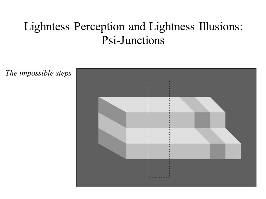 Lighntess Perception and Lightness Illusions: Psi-Junctions The impossible steps