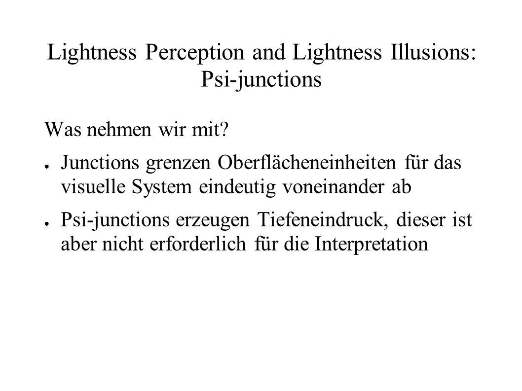 Lightness Perception and Lightness Illusions: Psi-junctions Was nehmen wir mit? Junctions grenzen Oberflächeneinheiten für das visuelle System eindeut