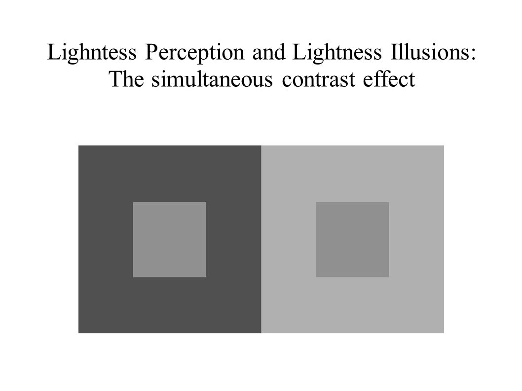 Lightness Perception and Lightness Illusions: Snake Illusion Sign-preserving X-junctions konsistent mit Transparenzeffekt starke atmosphärische Grenzen zwischen den Streifen Teststimuli höchste/niedrigste Leuchtdichte im Streifen statistische Beurteilung (siehe Simultankontrast Effekt)