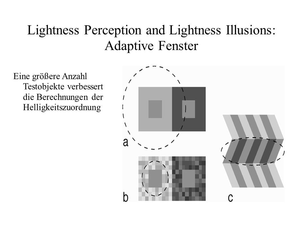 Lightness Perception and Lightness Illusions: Adaptive Fenster Eine größere Anzahl Testobjekte verbessert die Berechnungen der Helligkeitszuordnung