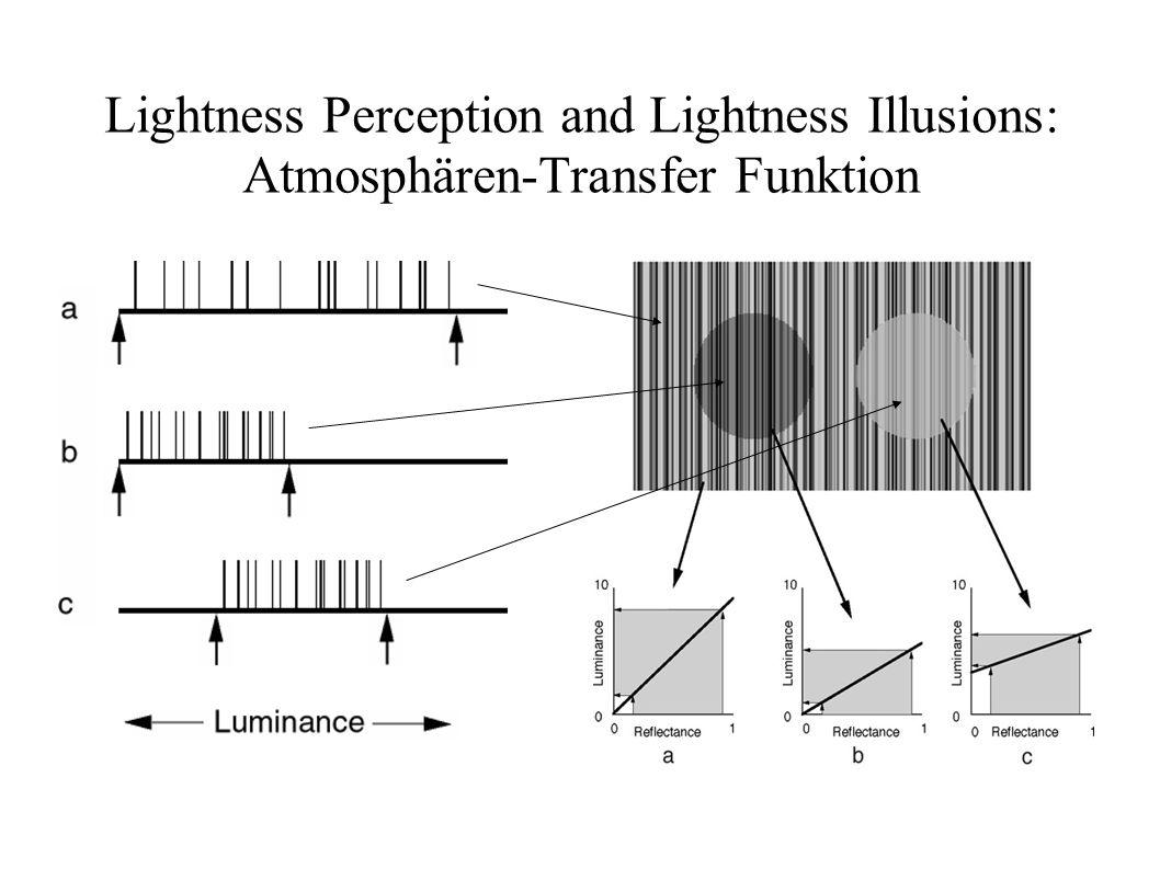 Lightness Perception and Lightness Illusions: Atmosphären-Transfer Funktion