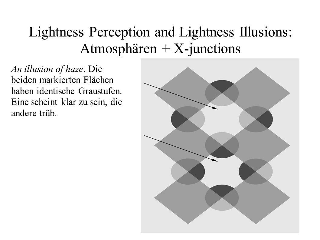 Lightness Perception and Lightness Illusions: Atmosphären + X-junctions An illusion of haze. Die beiden markierten Flächen haben identische Graustufen