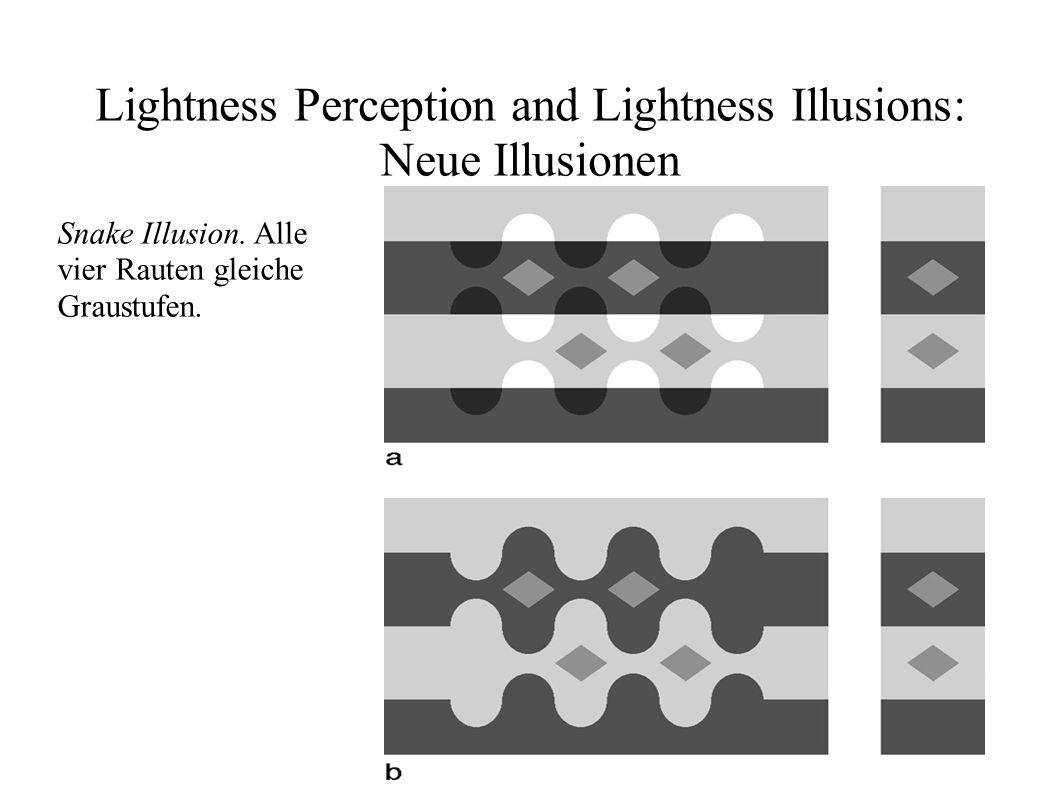 Lightness Perception and Lightness Illusions: Neue Illusionen Snake Illusion. Alle vier Rauten gleiche Graustufen.