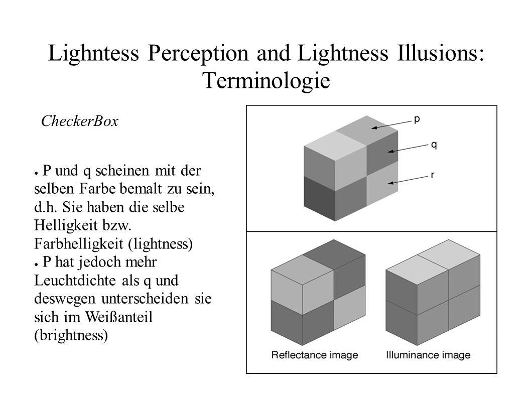 Lighntess Perception and Lightness Illusions: Terminologie CheckerBox P und q scheinen mit der selben Farbe bemalt zu sein, d.h. Sie haben die selbe H