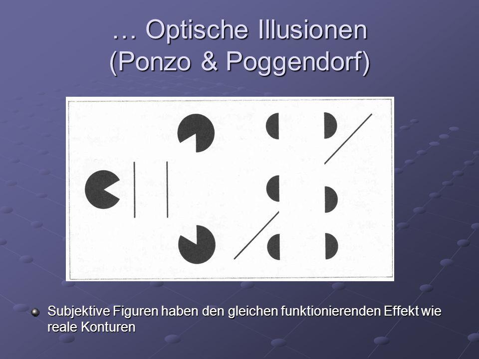 … Optische Illusionen (Ponzo & Poggendorf) Subjektive Figuren haben den gleichen funktionierenden Effekt wie reale Konturen