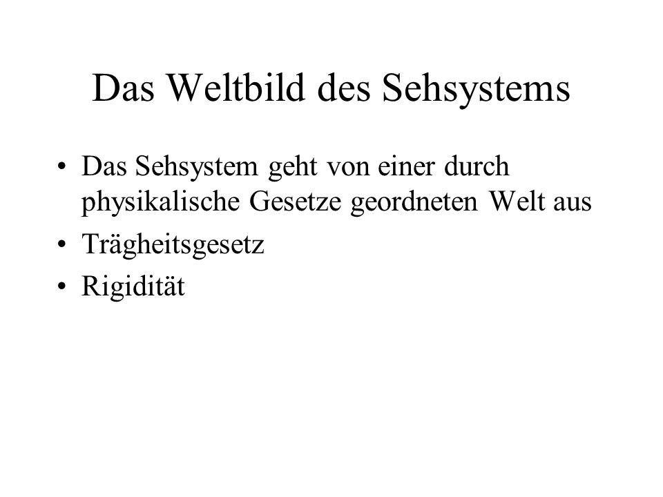 Das Weltbild des Sehsystems Das Sehsystem geht von einer durch physikalische Gesetze geordneten Welt aus Trägheitsgesetz Rigidität