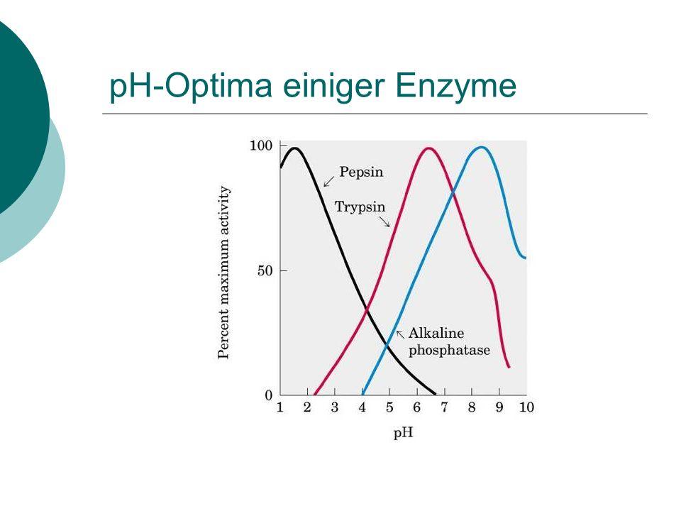 Isoelektrische Punkt von Proteinen