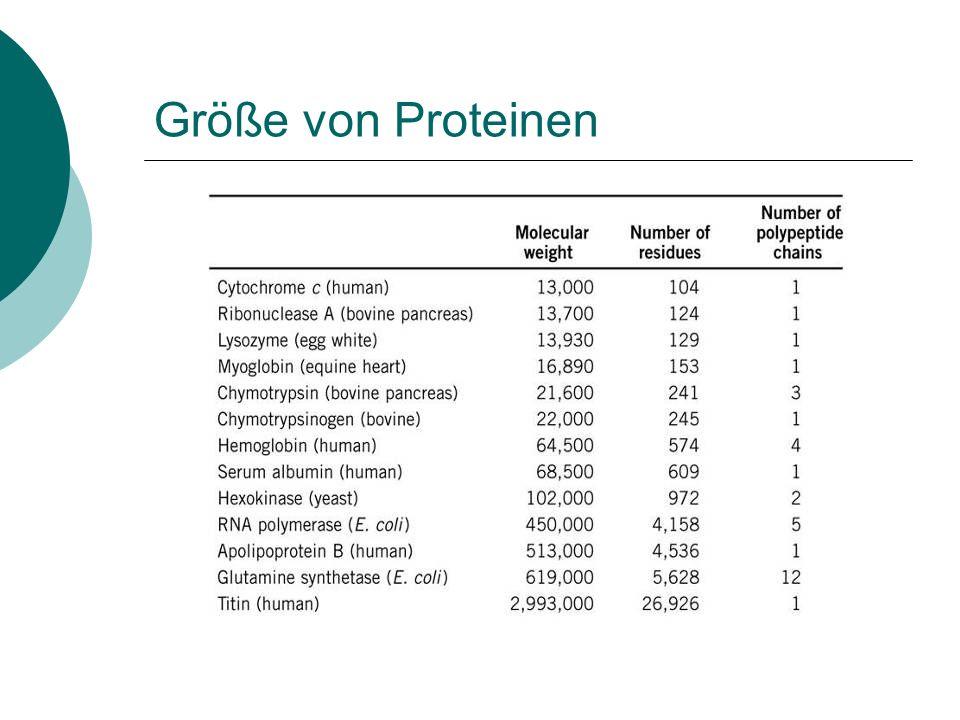pH-Optima einiger Enzyme