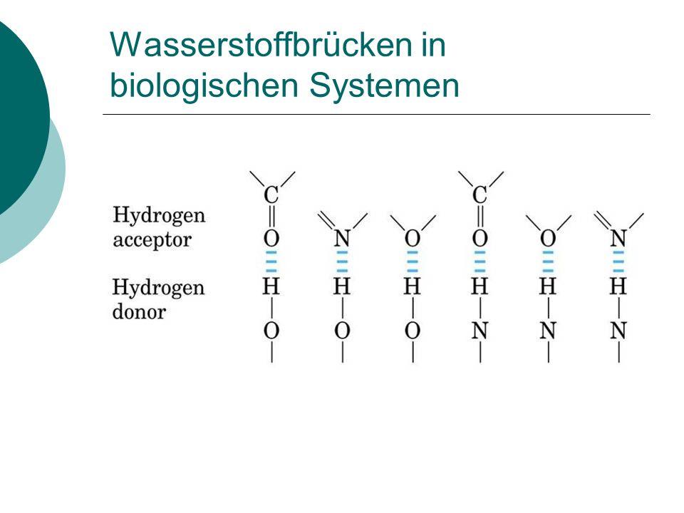 Aminosäure, Peptide und Proteine