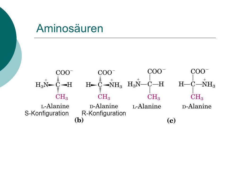 Aminosäuren S-KonfigurationR-Konfiguration