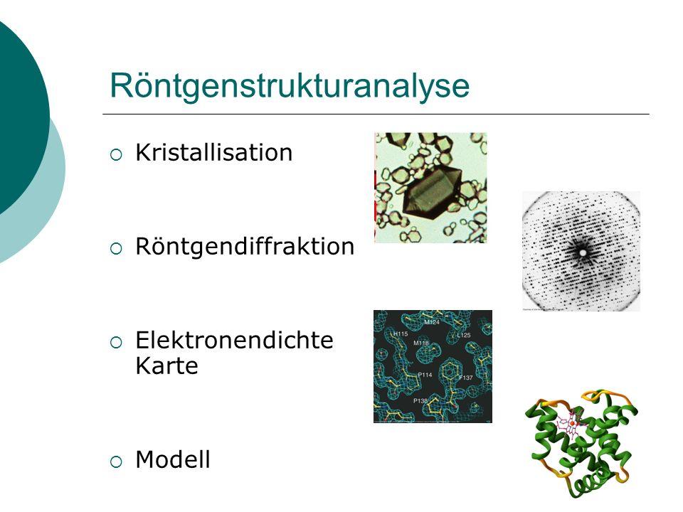 Bestimmung der 3D-Struktur von Proteinen Experimentell Röntgenstrukturanalyse NMR-Spektroskopie Elektronenmikroskopie In silico-Verfahren Homologie-Mo