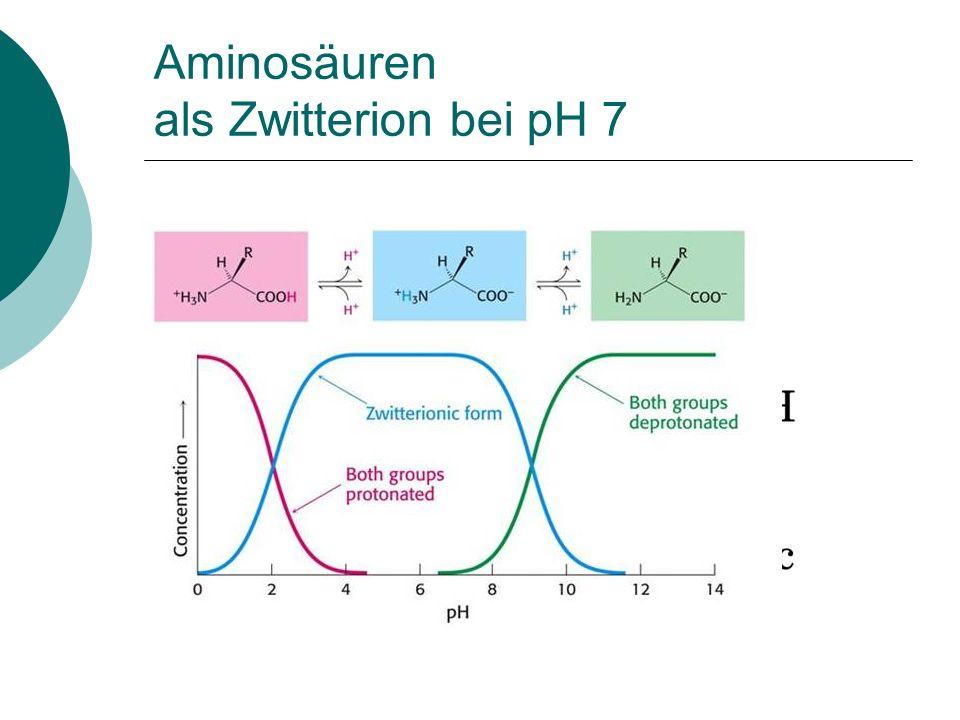 Aminosäuren als Zwitterion bei pH 7 (Betain)